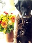 Larson mit Blumen